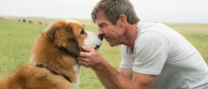 A-Dogs-Purpose-trailer-700x300